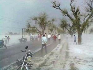 Untimely rain, hailstorm damaged in Maharashtra