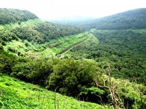 western zone eco sensitive zone maharashtra