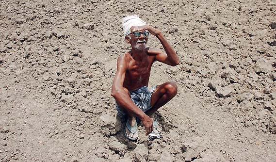 drought_in_maharashtra