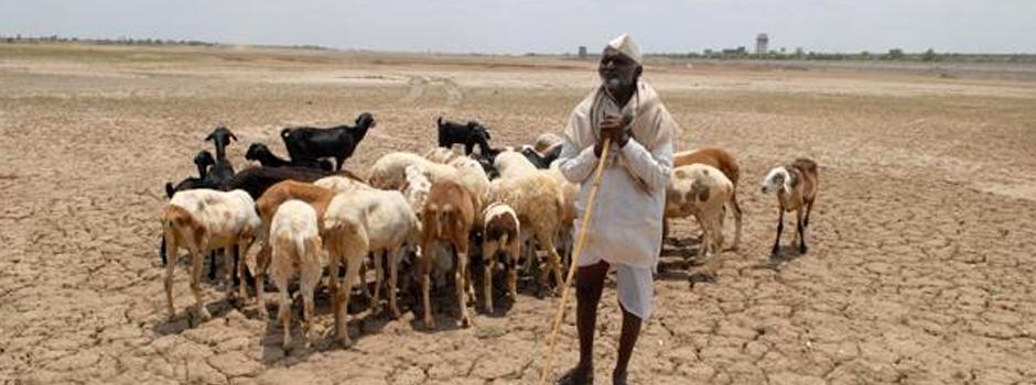maharashtra drought_322