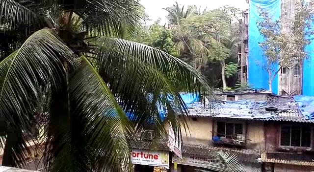 MUMBAI RAIN (5)