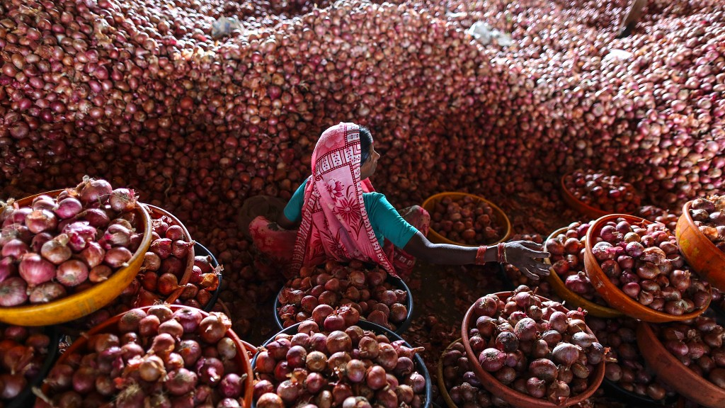 Inside An Onion Storehouse As India Prepares To Import Onions As Prices Surge