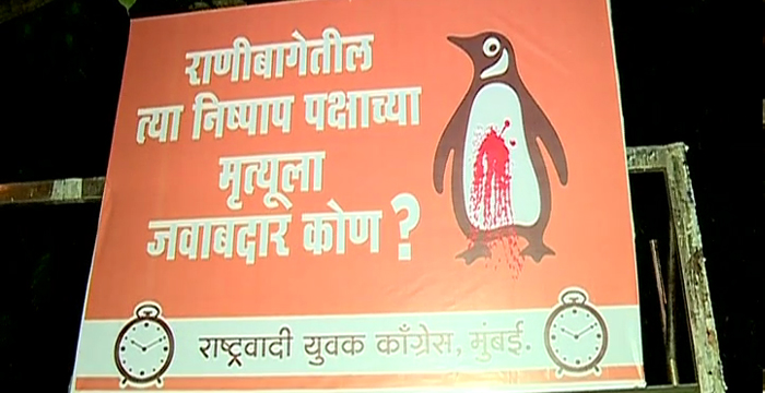 Penguine Poster2