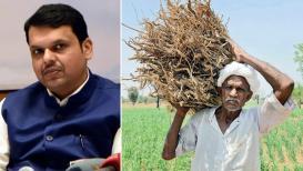 शेतकऱ्यांच्या जखमेवर मीठ,पिकविम्यातून होणार कर्जाची वसुली