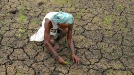 कर लावा मात्र शेतकऱ्यांचं उत्पन्न कोण वाढवणार?