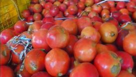 डाळिंब उत्पादक शेतकरीही देशोधडीला