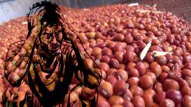 सरकारचं धोरणं शेतकऱ्याचं मरण ; 10 लाख टन तूर कोण खरेदी करणार ?