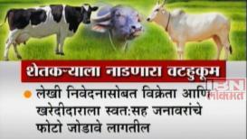 शेतकऱ्यांच्या जनावरांना सरकारी वेसण, विक्री-खरेदीसाठी लागणार परवानगी