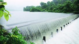 पावसामुळे तलावांच्या पाणीपातळीत वाढ