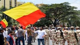 कर्नाटकाचा वेगळा झेंडा असावा ही कर्नाटकची मागणी योग्य आहे का?